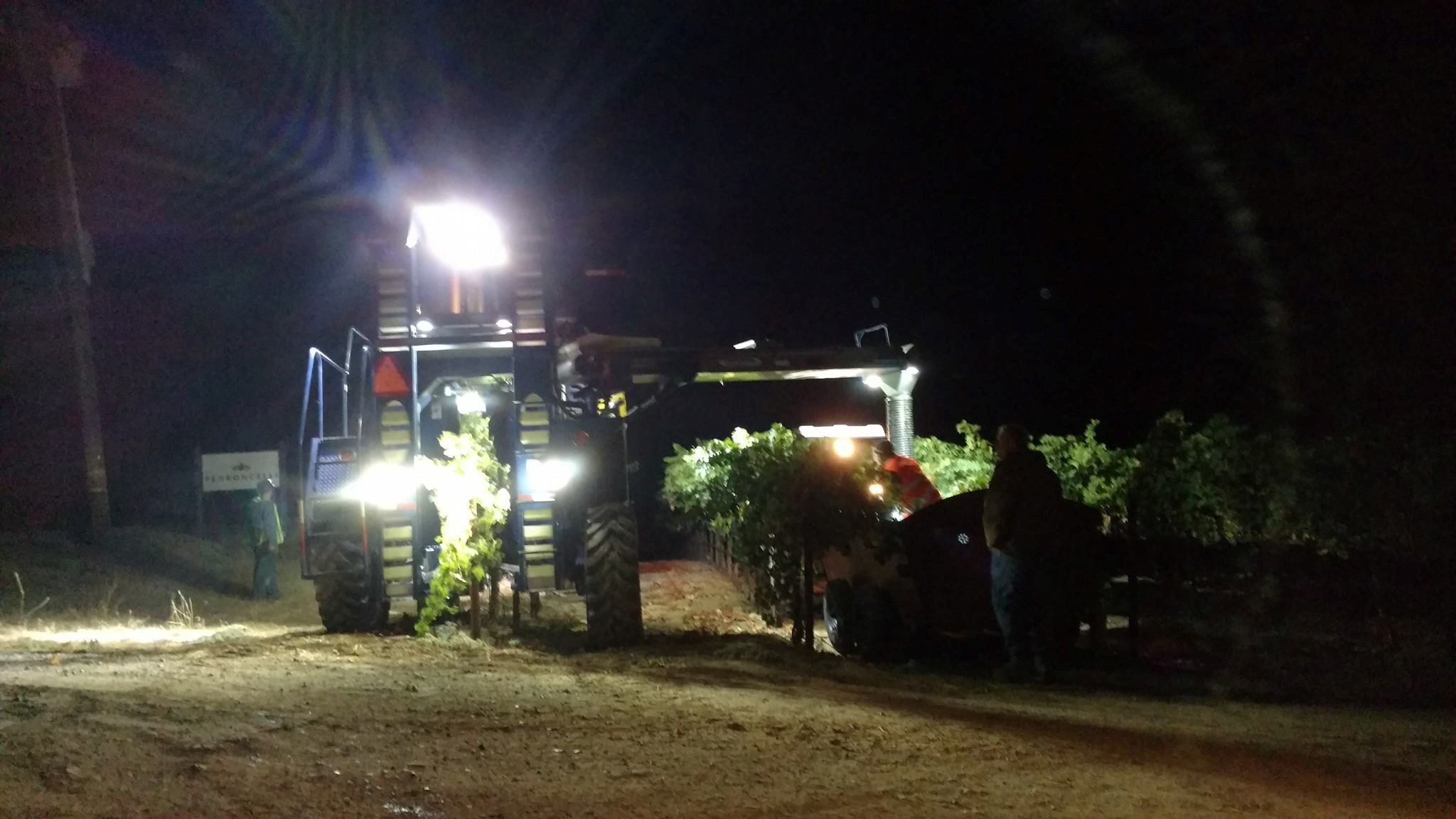 Rolling with the Crew: Machine Harvesting