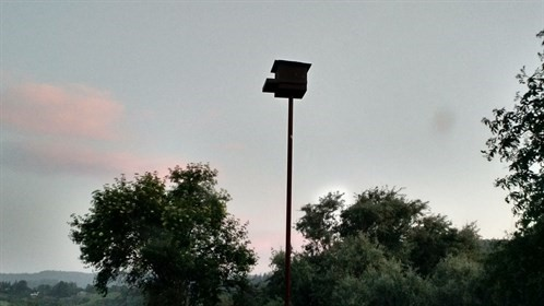 Owl Box in MC Vineyard